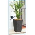Decorative Planter $19.99; Coir Mat $16.99; Garden Spray Nozzle $9.99; Gardening Gloves $4.99 etc. @ ALDI [Starts Sat 17/4]