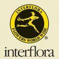 Interflora promo codes